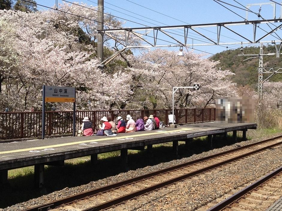 山中渓駅と花見